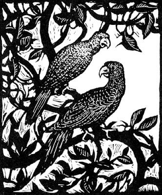 [parrots illustration]