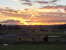 Sunset at Reporoa