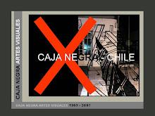 Caja Negra Artes Visuales