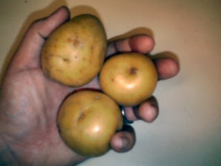 Potatoes $1.50