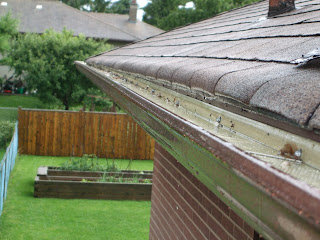 Water behind eavestrough Drip edge Toronto