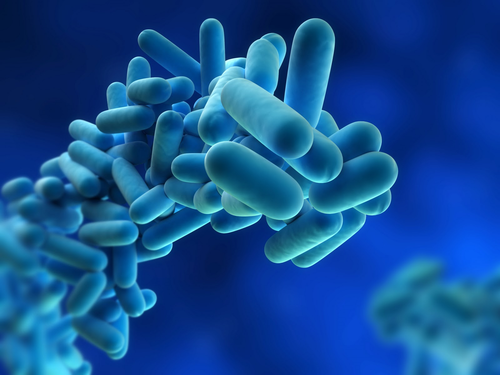 In controlling the risk from legionella bacteria in most water systems