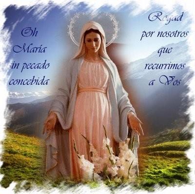 Ruega por nosotros, Santa Madre de Dios