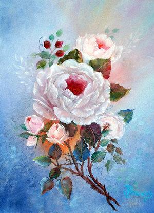 White Rose for Royals