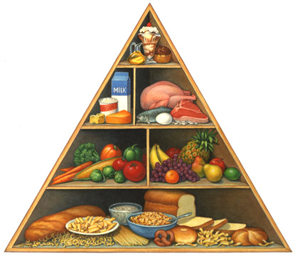 The Rattus Food Pyramid Guide