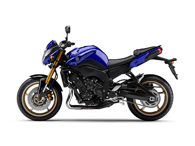 2010 Yamaha FZ8 Motorcycle