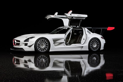 2010 Mercedes-Benz SLS AMG GT3 Picture