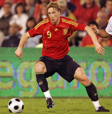 Fernando Torres World Cup 2010 Spain Football Player