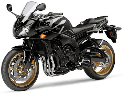 2010 Yamaha FZ1 Picture