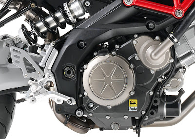 2010 Aprilia Shiver 750 Engine