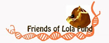 Friends of Lola