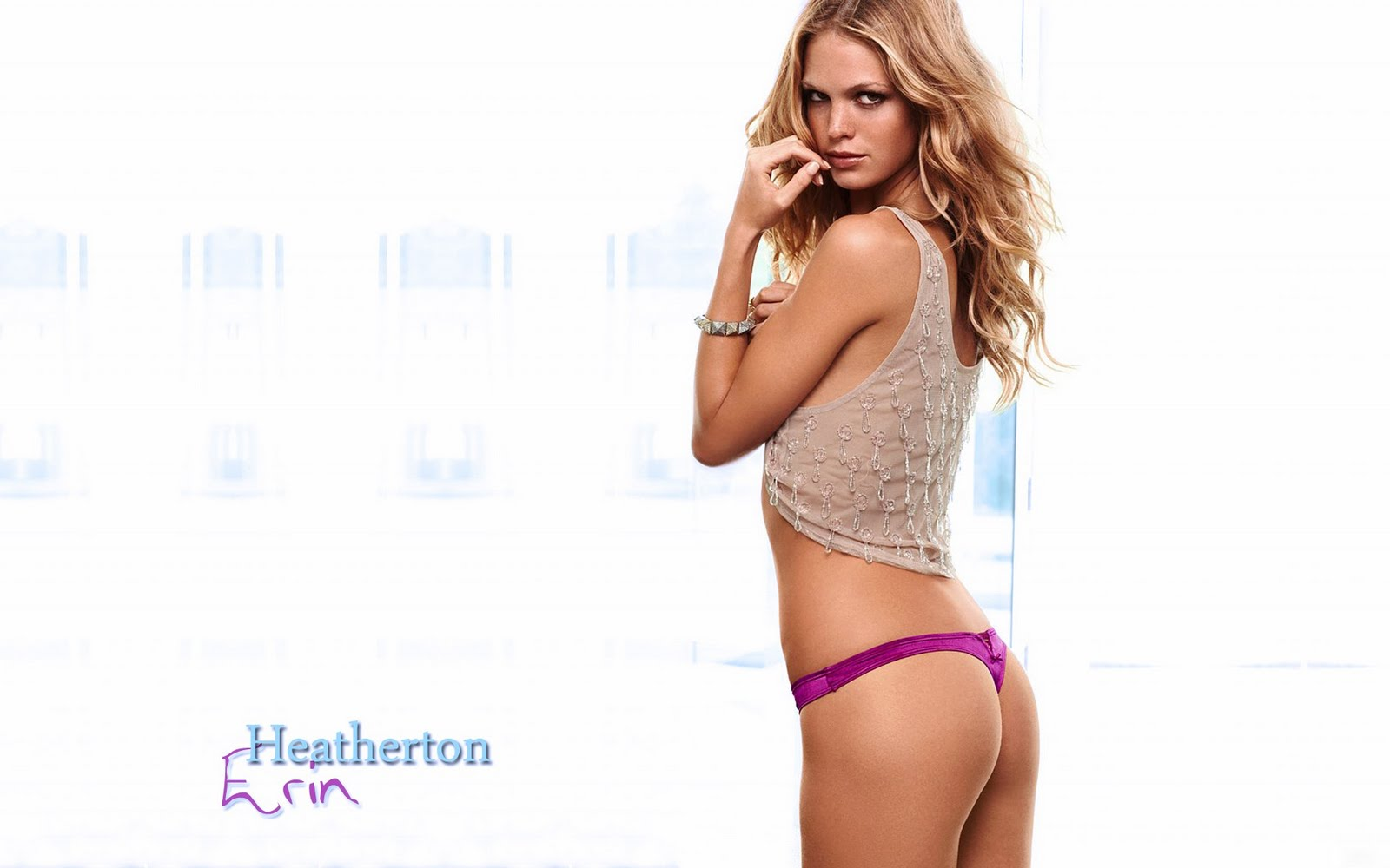 Erin Heatherton Net Worth