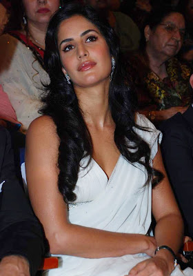 katrina hot in saree