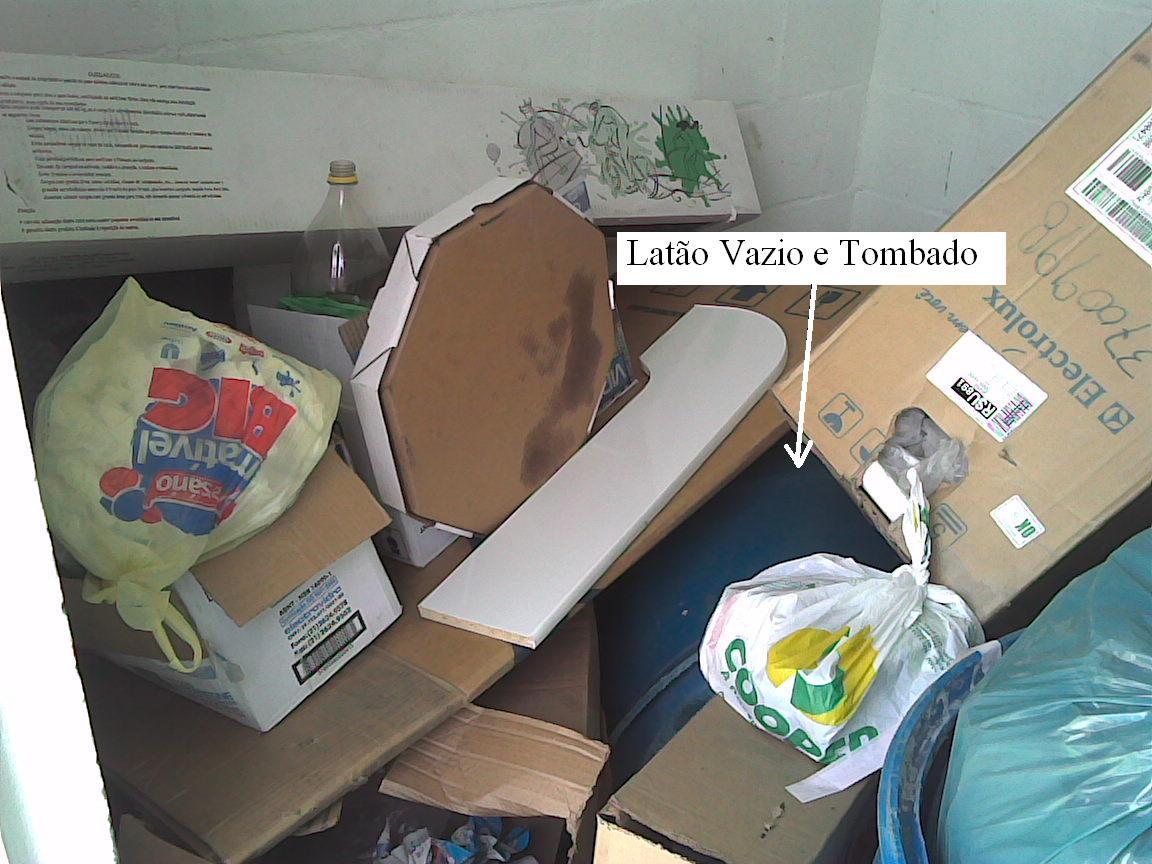 Condomínio Residencial Recanto dos Pássaros: Novembro 2009 #487A83 1152x864 Banheiro Cachorro Grama
