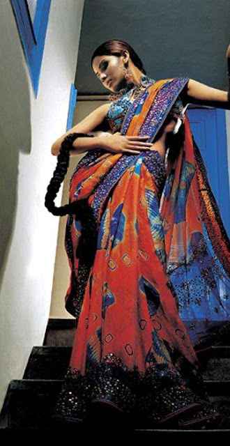 Pakistani Model in a Saree with Long Hair, Very Fashionable Look