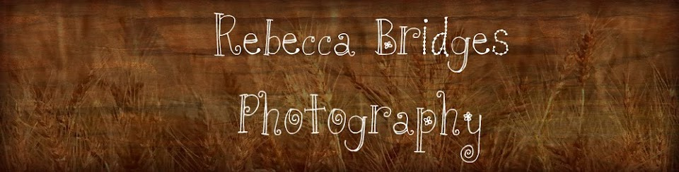 Rebecca Bridges Photography