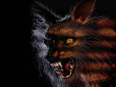 werewolf wallpapers horror wallpapers