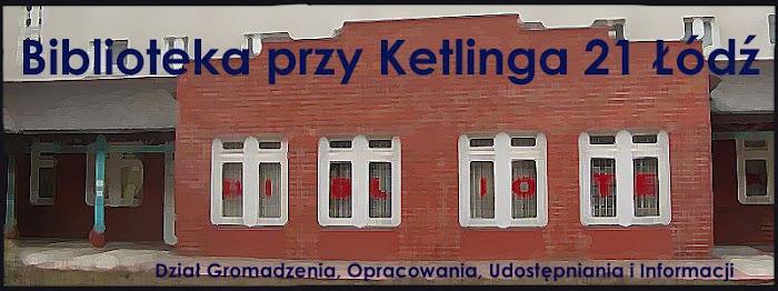Biblioteka przy Ketlinga