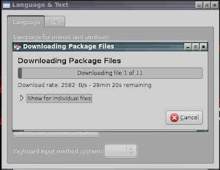language packages downloading peppermint