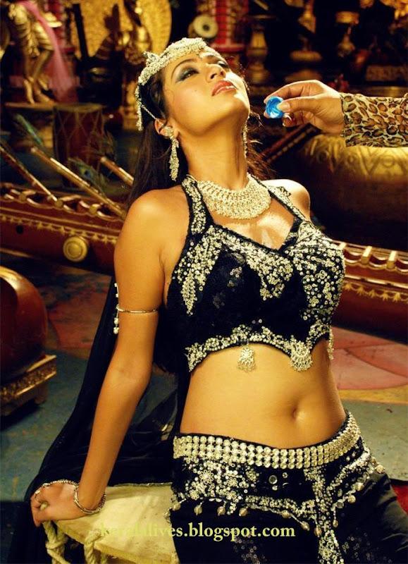 South Indian Sexy Sadha Showing Chubby Navel Amazing Photoshoot hot photos