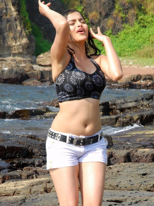 youngsheena shahabadi ings in short bikini latest photos