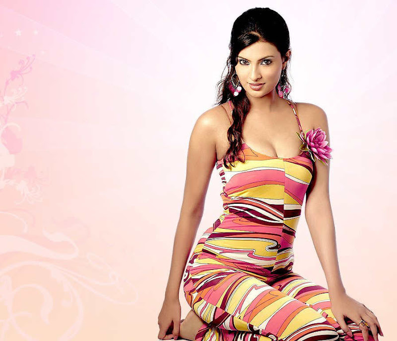 Bollywood Hot and Sexy Sayali Bhagat Beautiful HQ Photos wallpapers