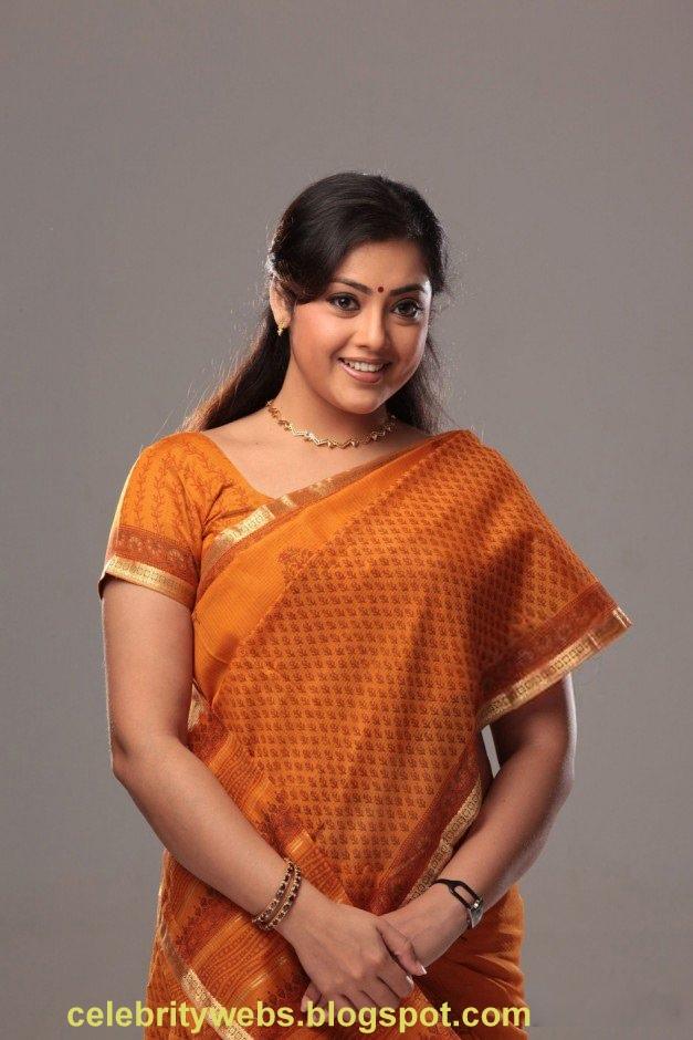south old sexy actress meena photo album south cinema gallery