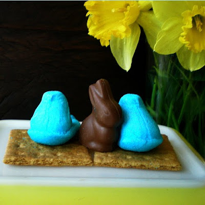 Easter S'mores Recipe from FoyUpdate.blogspot.com