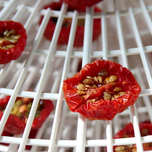 Foy Update: How to Dehydrate and Oven Dry Tomatoes
