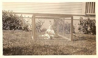 Family Photographs - Post 49: An Outdoor Playpen