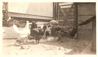 Family Photographs - Post 62: Betty and the Chickens