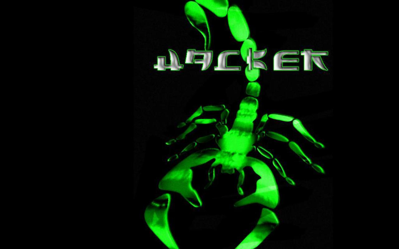 http://1.bp.blogspot.com/_JDacj7i_nbM/S9poT7kVRNI/AAAAAAAAAB8/UgUOpJk7P3E/s1600/h4ckscorpion-wallpaperfinal.JPG