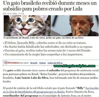 jornal mostra que gato recebeu bolsa família do governo federal