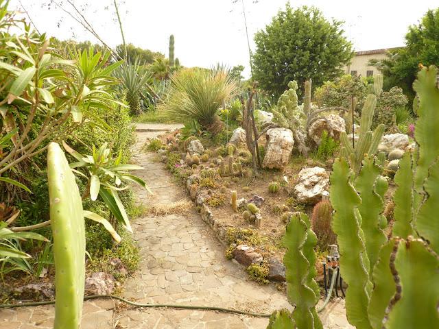 Giardini in gallura giardino con piante grasse a tres - Giardini con piante grasse ...