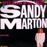 SANDY MARTON - White Storm In The Jungle (1986)