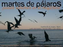poesía de pájaros