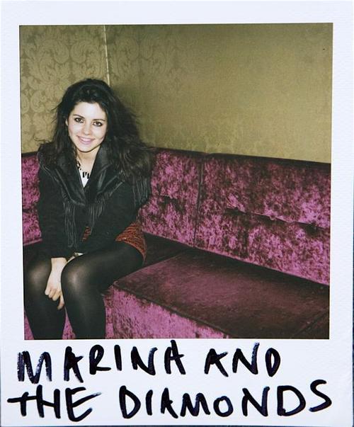 Marina%2B%2Bthe%2BDiamonds%2Bpic3.jpg