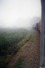 Ferrocarriles de Brasil