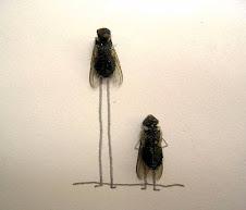 Sådan kan du tegne fluebilleder!