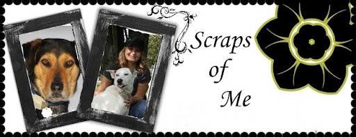 Scraps of Me