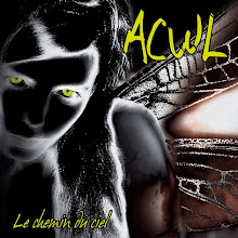 ACWL on deezer / LA PERFECTION DE L'ANNéE