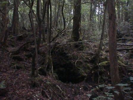 http://1.bp.blogspot.com/_JLWksI_TzlU/SxStpKhm3gI/AAAAAAAAAOI/FEJFVblyY0I/s1600/Aokigahara-jukai.JPG
