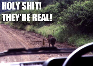 timon and pumba real life holy shit they are real