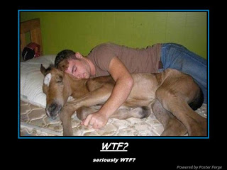 wtf, man sleeping with a deer, funny pictures
