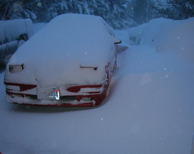 Trev's Car