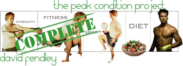 The Peak Condition Project - David Fendley