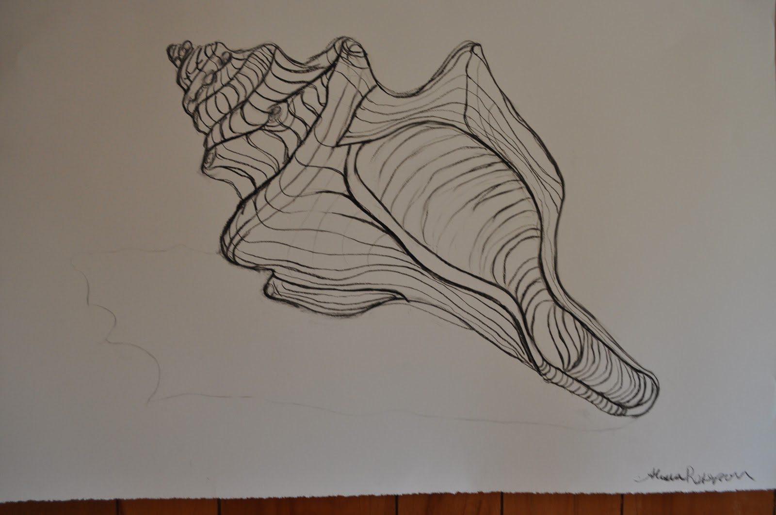 Contour Line Drawing Of Natural Forms : Images about contour drawing on pinterest