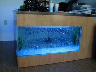 awesome aquarium fish tank design