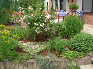 garden with herbs mixed with flowers