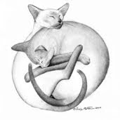 drawing of cats as yin and yang